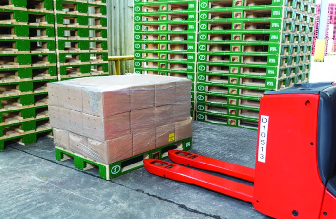 Innovation set to dramatically improve lifespan of wooden pallets
