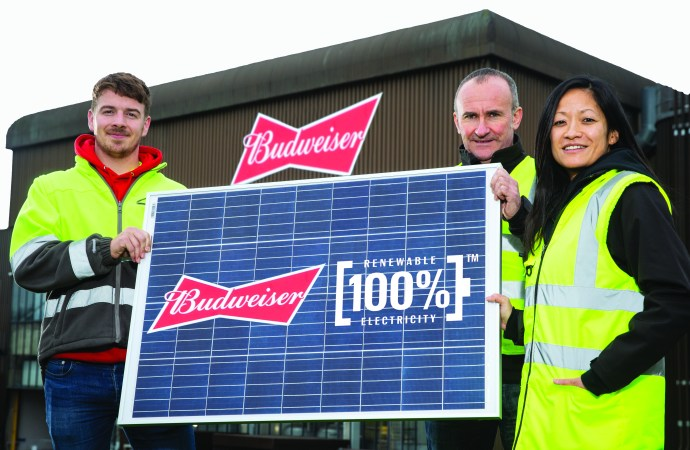 Budweiser beer goes green with solar energy deal