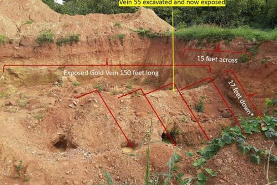 Guskin Gold Corp. reports Kukuom property samples
