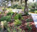 Estero Island Garden Club
