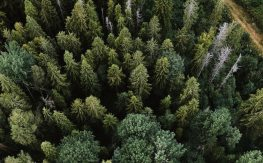 JLL releases global sustainability report, outlining a host of new goals