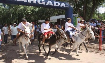 Clementina, la burra de Mina Clavero confirmó su presencia en la Maratón de Burros de General Deheza