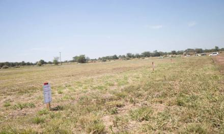 CARNERILLO: Sorteo de terrenos