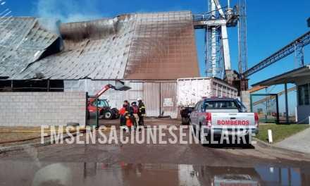 Importante incendio en la planta generadora de Biomasa de Ticino