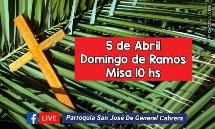Celebración de la santa misa: «Domingo de ramos  a través de Facebook»
