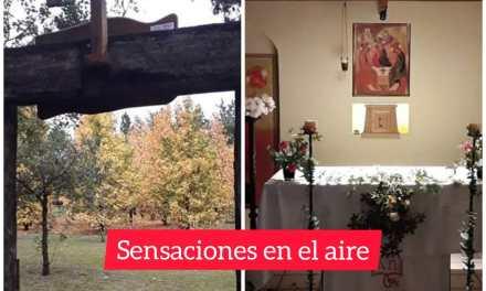 Monasterio: «En Julio vuelven las misas con asistencia de fieles y el protocolo adecuado»