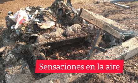 Se quemó totalmente un contenedor de basura en calle San Lorenzo