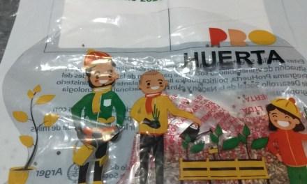 Están disponibles los kits de semillas «Pro-Huerta», «Otoño-Invierno»