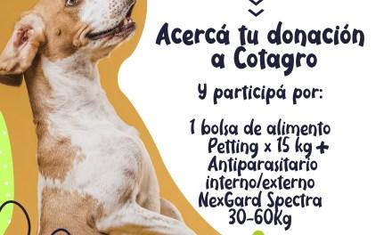 En el Día del animal, Cotagro acompaña con una campaña para Colitas felices