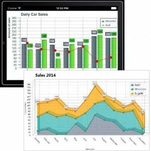 Delphi XE5 Firemonkey TMS Charts