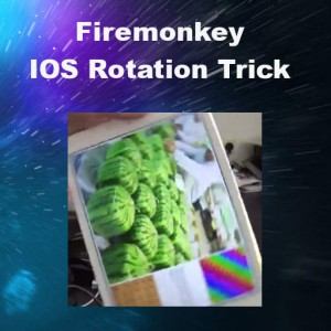 Delphi XE8 Firemonkey Controls Rotate In Place IOS