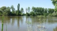 À une très forte majorité, le comité de bassin Loire-Bretagne vient d'approuver le schéma directeur d'aménagement et de gestion des eaux (SDAGE) de son territoire pour la période 2016-2021. Malgré […]