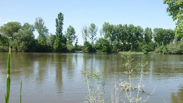 Source : X.METAY - FNE Pays de la Loire