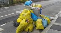 L'enquête publique relative au projet de Plan régional de Prévention et de gestion des déchets avec son volet Plan d'Action Économie Circulaire s'est clôturé le 2 mai 2019. FNE Pays […]