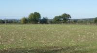 L'arrêté établissant le programme d'actions régional en vue de la protection des eaux contre la pollution par les nitrates d'origine agricole pour la région des Pays de la Loire vient […]