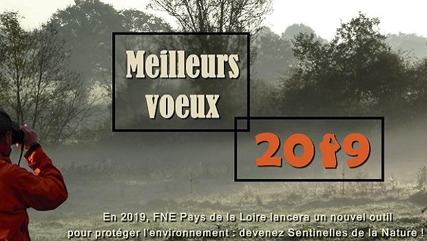 Jean-Christophe Gavallet, président, et l'ensemble des membres du conseil d'administration ainsi que l'équipe salariée de FNE Pays de la Loire vous souhaitent une belle et heureuse année 2019 !