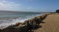 Le 23 juin 2015, le CESER des Pays de la Loire a donné son avis sur la stratégie régionale pour la gestion durable des risques littoraux en Pays de la […]