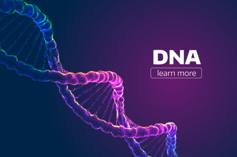 تحليل dna في السعودية وهل يمكن اقامة تحليل dna اثناء الحمل