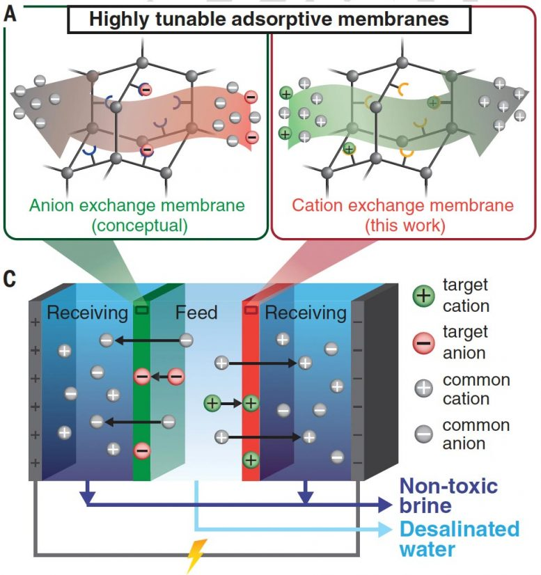 Desalination Using Highly Tunable Absorptive Membranes