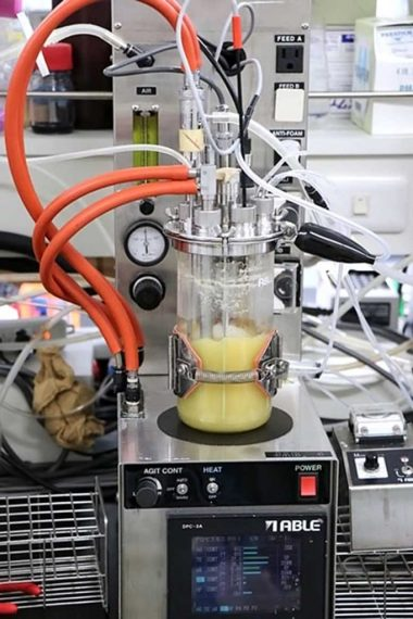 Engineered Microbes Synthetic Rubber