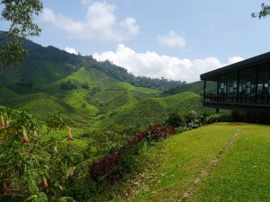 Lakehouse, Cameron Highlands