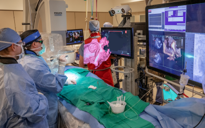 EchoPixel's 4D Hologram Technology Used to Successfully Complete First Structural Heart Procedure