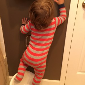 That's one use for the potty: Reaching the light switch. Should this be allowed or not?