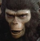 Cornelius from The Planet of the Apes