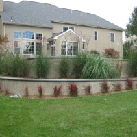 New Landscape Project in Radnor