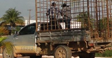 Vereador Luizão (PMDB), flarado transportando passageiro em carroceira boiadeiro com veiculo irregular junto a justiça eleitoral.