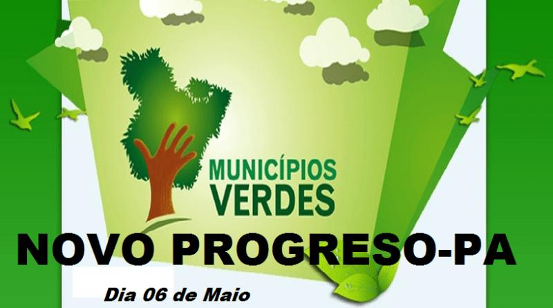 municipio verde