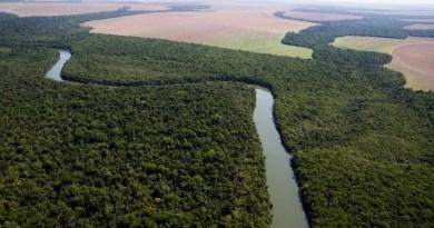 desmatamento-e-principal-preocupacao-ambiental-do-brasileiro-diz-pesquisa__377094_