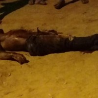 Homem é encontrado morto com marcas de tiro em Castelo dos Sonhos- IMAGEM FORTE;