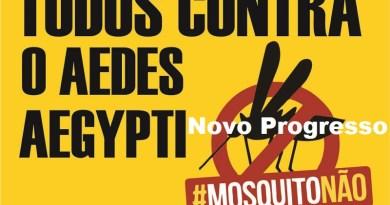 mosquito-1-1024x767