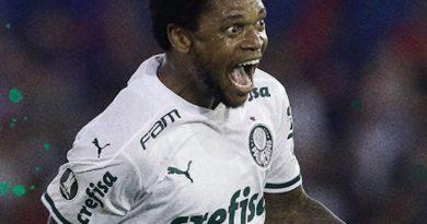 Palmeiras-900x556