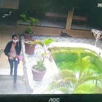 Mulher comandou assalto a residência em Novo Progresso -Veja fotos e detalhes do assalto