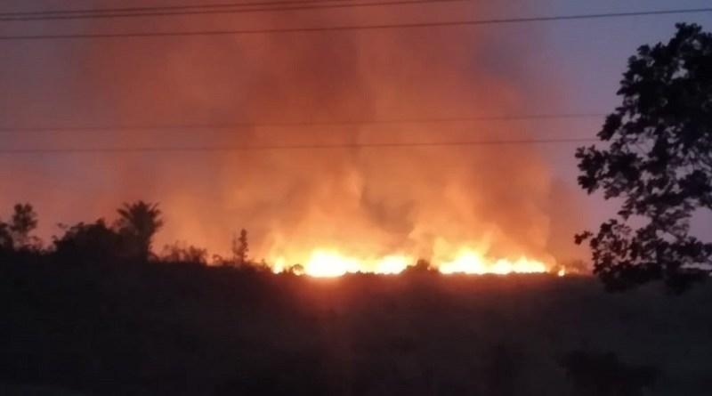 Decreto Presidencial que proíbe queimadas foi ignorado no Pará – Agosto foi o mês com maior número de queimadas em 2020