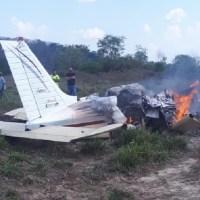 Avião que fez pouso forçado degolou um animal em Novo Progresso