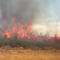 Incêndio em vegetação assusta moradores no Jardim Paraíso em Novo Progresso
