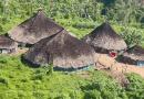 Em cidade da Amazônia, servidores de saúde indígena trocam doses de vacina por ouro