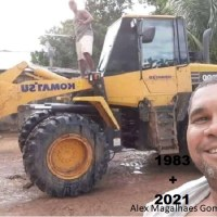 Operador de máquina morre após ser atingido por galho de árvore enquanto trabalhava em madeireira