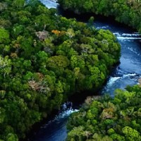 """Prefeito Gelson Dill já sabia da criação da Unidade de conservação na gleba São Benedito e rio Azul"""",diz diretor do IDEFLOR"""
