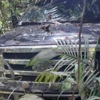"""F4000 roubada de Novo Progresso é encontrado """"escondido"""" em matagal na cidade de Trairão"""