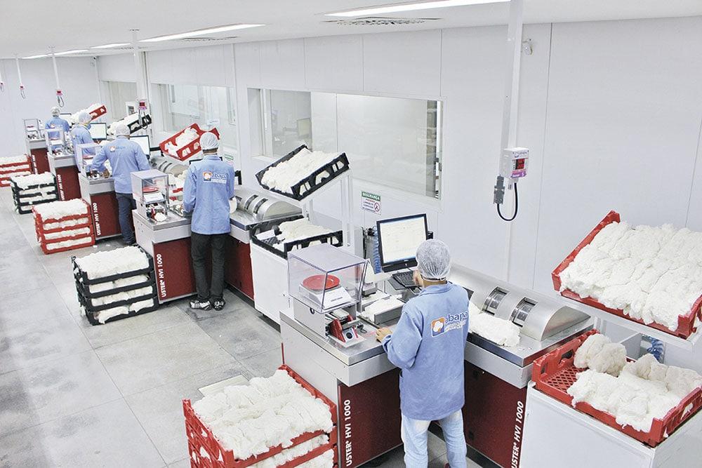 Bahia ultrapassa a marca recorde de três milhões de análises de fibra de algodão em 2019