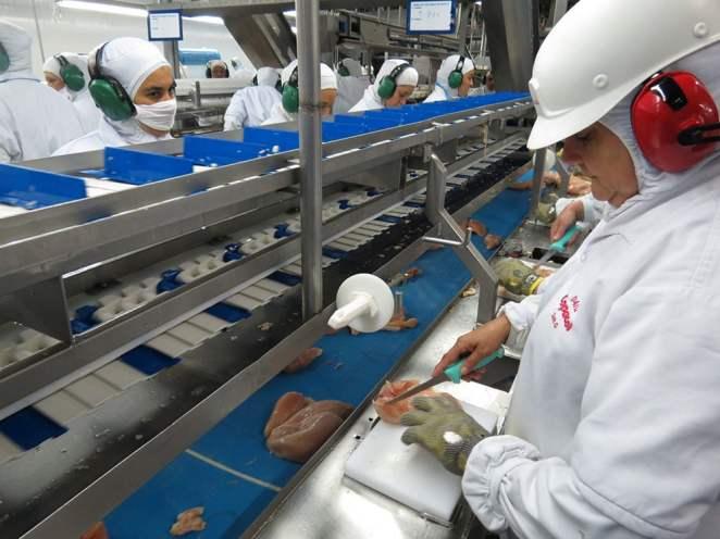 O setor de frigoríficos entrou no rol de serviços essenciais pelo decreto nacional assinado pelo presidente Jair Bolsonaro, em março (Foto: ANPr/SINDIAVIPAR)