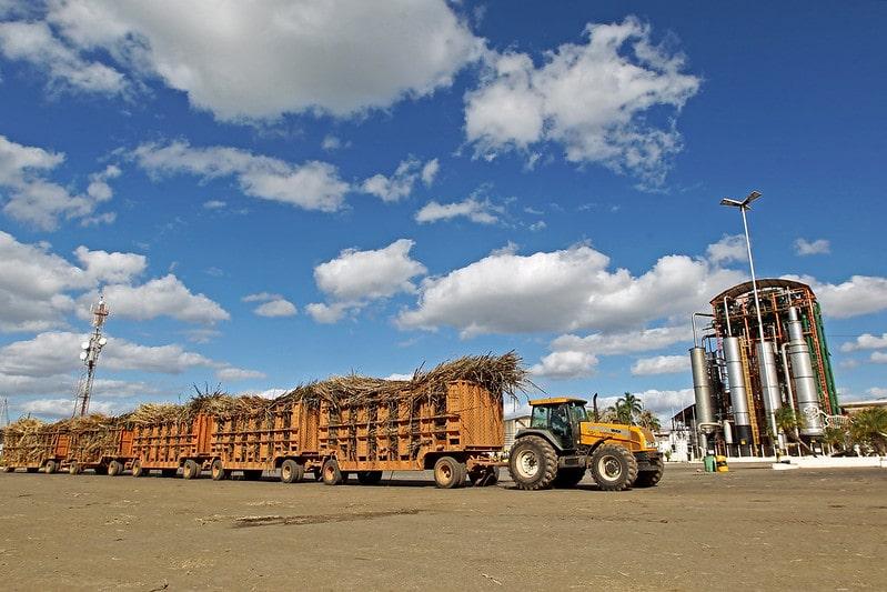 Em junho, IBGE estima crescimento de 13% da produção de grãos na Bahia para 2020