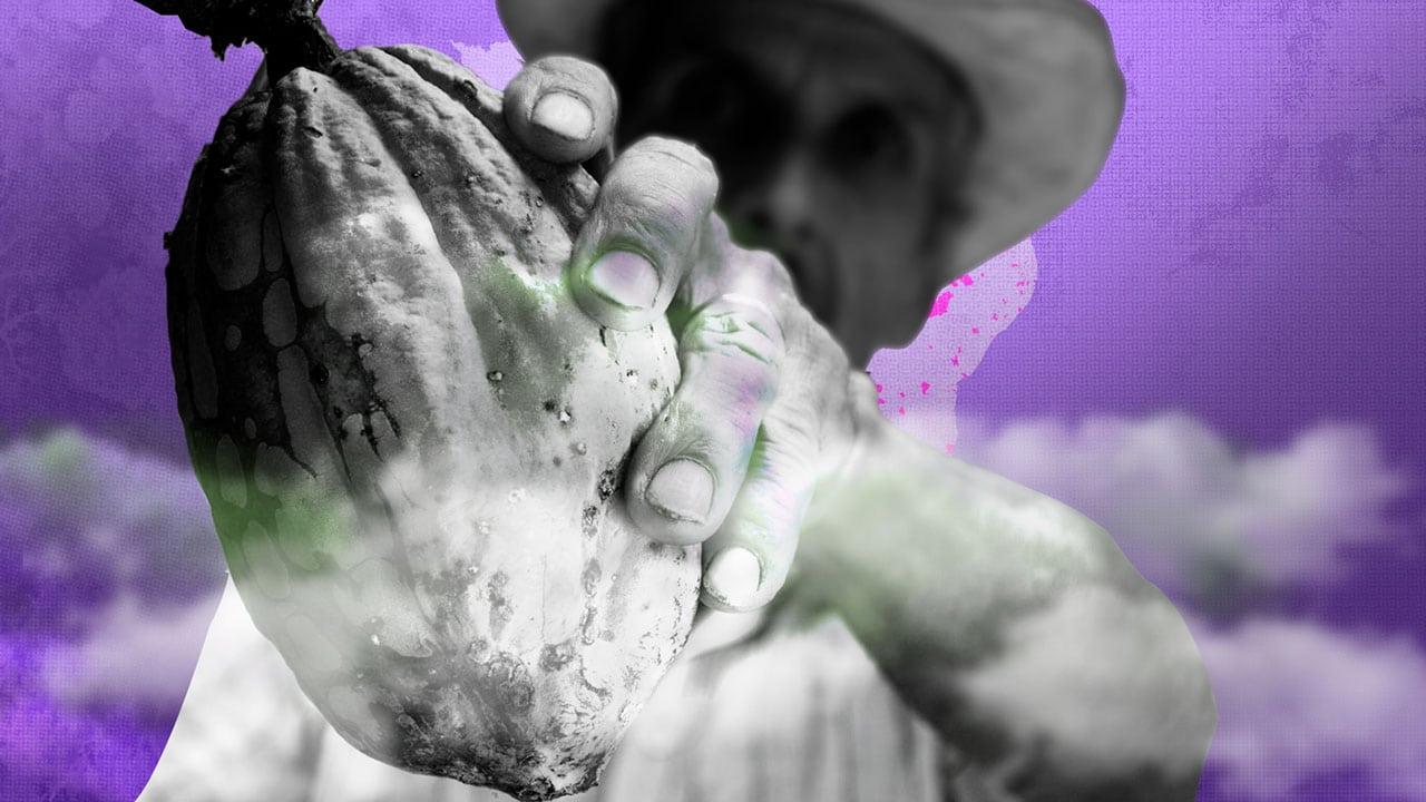 Empresas escondem intoxicações de trabalhadores rurais por agrotóxico