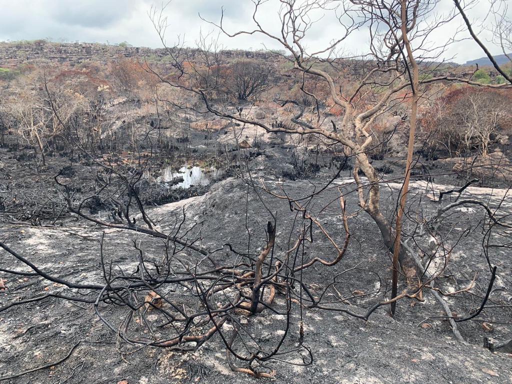 Produtores baianos doam equipamentos para apoiar no combate a incêndios na Chapada Diamantina