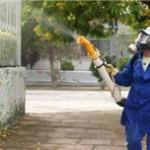 Alfredo Chaves já tem 220 notificações de dengue