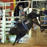 Rodeio, country e cavalgada animam o fim de semana em Alfredo Chaves